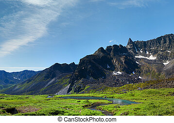 Beaver Dam in Archangel Valley, Hatcher Pass, Alaska - View...