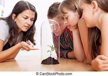 Students looking at plant inside greenhouse