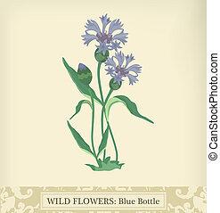 Cornflower - Blue Bottle Cornflower, Wild flowerBeautiful...