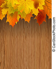 Fall leaves making border on wooden. EPS 8 - Fall coloured...