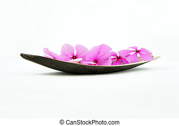 Pink Flower Boat - Boat of flowers isolated on White...