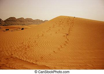 Desert of Bahrain - Detail of the Desert of Bahrain, Middle...