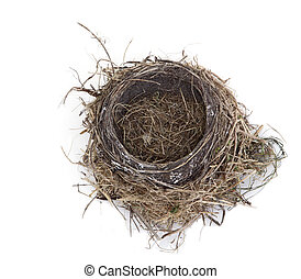 Empty Nest - Empty robin bird nest isolated on white...