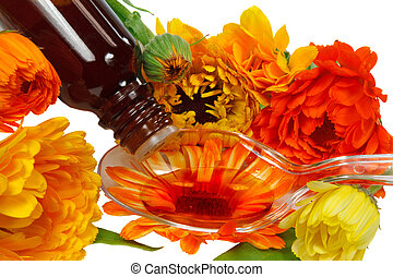 Herbal tincture from calendula
