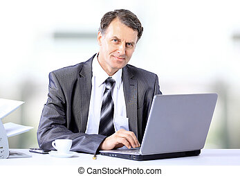 Businessman sitting at desk and working with laptop...