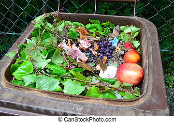Organic waste in rubbish bin - Household bio organic food...