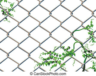 Barbed wire with ivy - Barbed wire background with creeping...