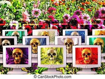 Monitors with silvery or golden skulls on floral background