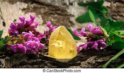 citrine, Pedra preciosa, pedra, madeira, prunella, Flores