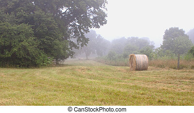 Haystacks_0268 - Round haystack in a foggy freshly mown...