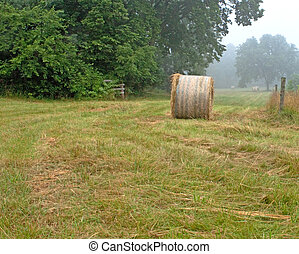 Haybale in Field - Round haystack in a freshly mown green...