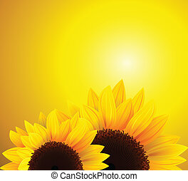 Abstract background with sunflowers, vector.