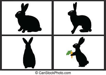 Easter Rabbit  - Easter rabbit isolated on white