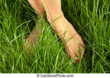 Woman's bare feet in the green grass