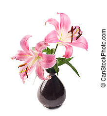 Pink lily in black pottery vase - Isolated pink lily in...