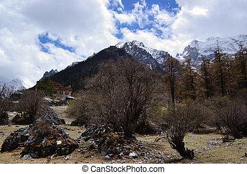 Tibetan mani stones by snow mountain - Tibetan mani stones...