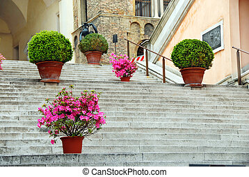 Padua - Staircase with flowerpots in center of Padua, Italy