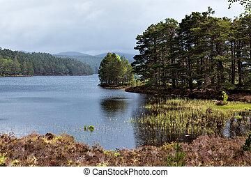 Scenic view of Loch an Eilein