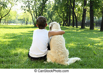 Tennager boy in the park with a dog - Teenager boy in the...