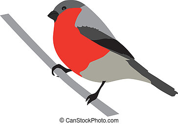 Bullfinch - Bird, Bullfinch, Finch, Warbler, Cartoon,...