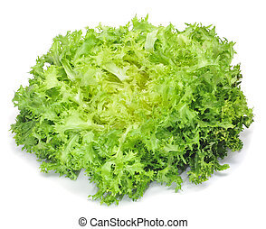 escarole endive - closeup of an escarole endive on a white...