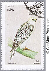 Jer-falcon - STATE OF OMAN - CIRCA 1972: A stamp printed in...