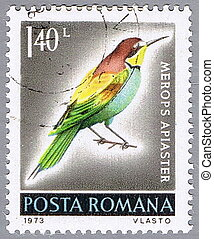 Merops apiaster - ROMANIA - CIRCA 1973 : A stamp printed in...