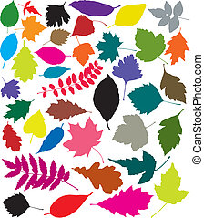 colorful silhouettes of leaves - vector colorful silhouettes...