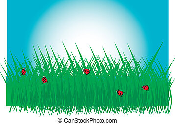 Grass with ladybirds