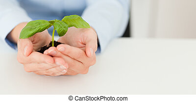 Woman holding a little plant in her hands