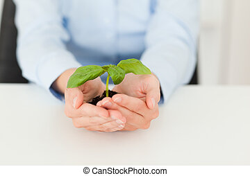 Woman holding a little green plant in her office