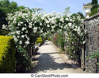 Rose Arbour at St Fagans, Cardiff