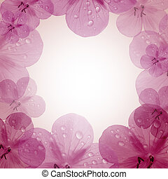 pink flower frame with copy space