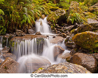 rainforest waterfall - A rainforest waterfall in lush...