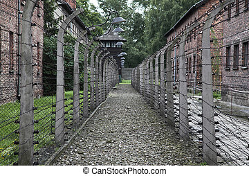 auschwitz detail of electric fence