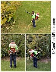 Gardener - A gardener is Spraying the trees