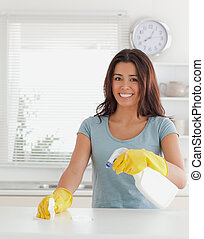 Charming female doing the housework while using a spray in...