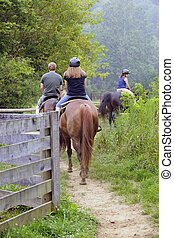 Trail Riders - The back view of two young teens and their...