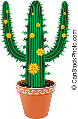 pot cactus with flowers