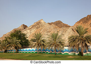 Palm Trees in Muscat, Sultanate of Oman