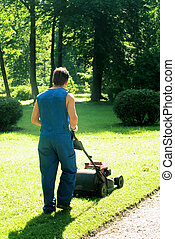 Lawnmower at the park - Man in uniform lawn the grass at the...