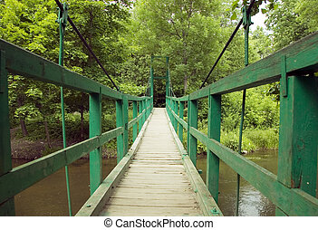 Green monkey bridge in the forest - Green hanging...