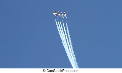 Canadian Snowbirds - The Canadian Air Force Snowbird...