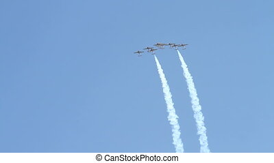 Canadian Snowbirds