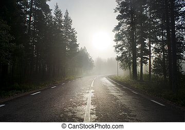 Rural asphalt road in fog