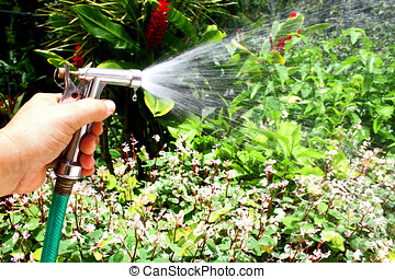 Home Garden - Close up of man hand holding a hose...