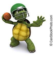 tortuga, lanzamiento, norteamericano, fútbol