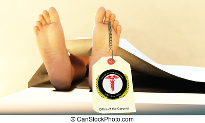 Cadaver Toe Tag - Closeup of cadaver feet under a medical...