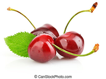 fresh berry cherry with green leaf