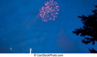 Fireworks at dusk.